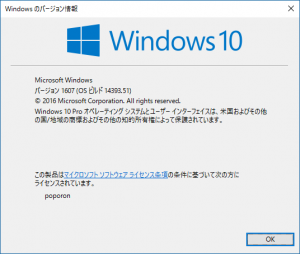 winver_windows10_pro_1607_build_14393.51